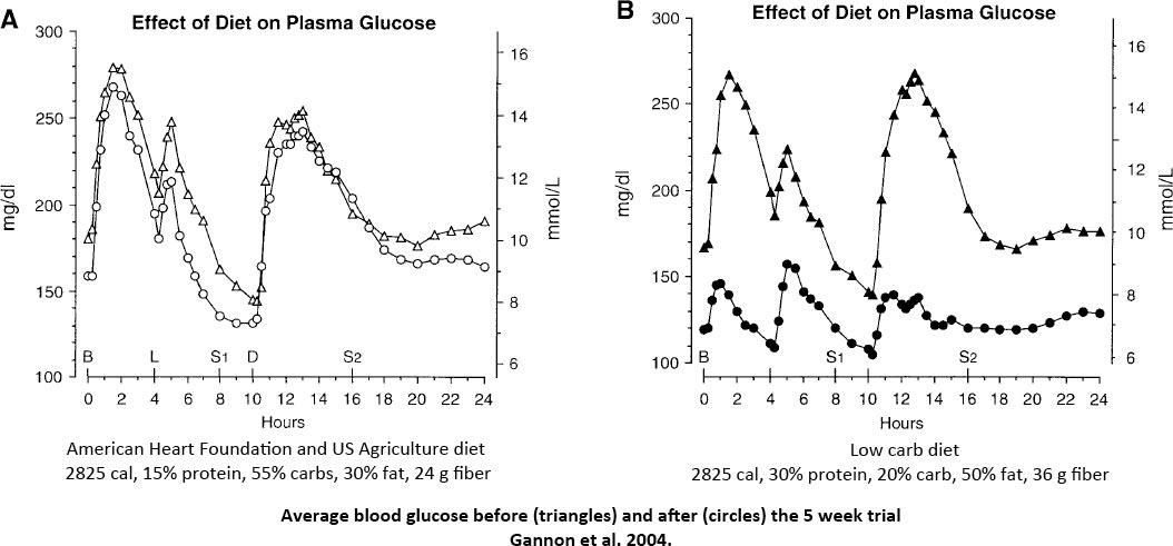 Gannon-blood-glucose