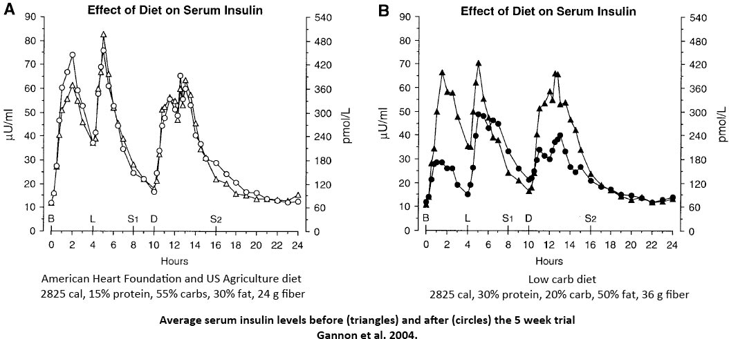 Gannon-insulin-levels