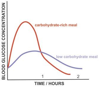 carb-vs-low-carb