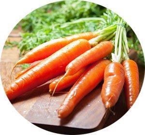 carrots-round
