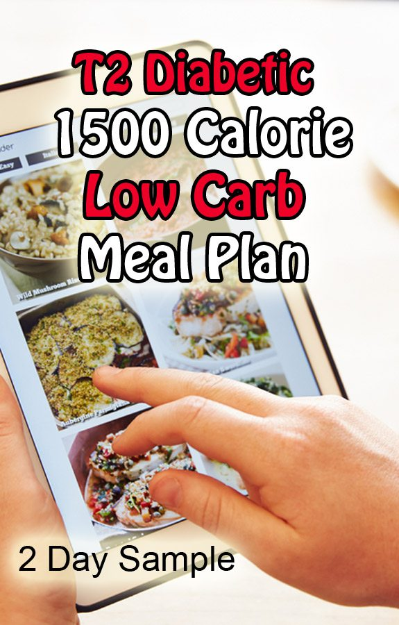 Type 2 Diabetic 1500 Calorie Meal Plan (2 Day Sample)