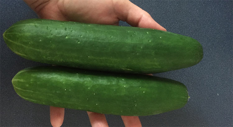 Cucumber and Type 2 Diabetes