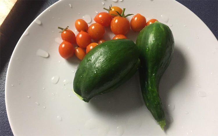 weird cucumber 2