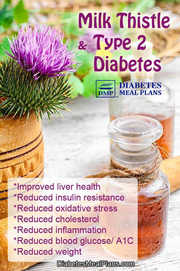 Milk thistle and diabetes benefits