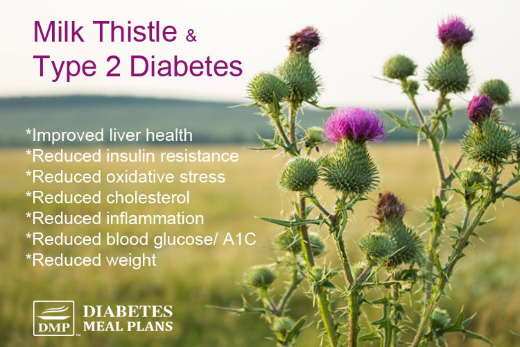 milk thistle and type 2 diabetes