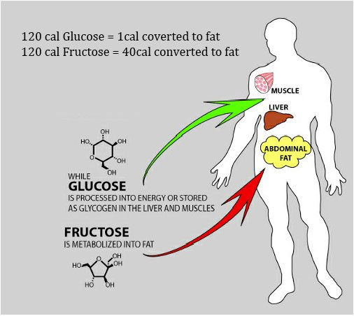 Fructose and Glucose Calorie Conversions