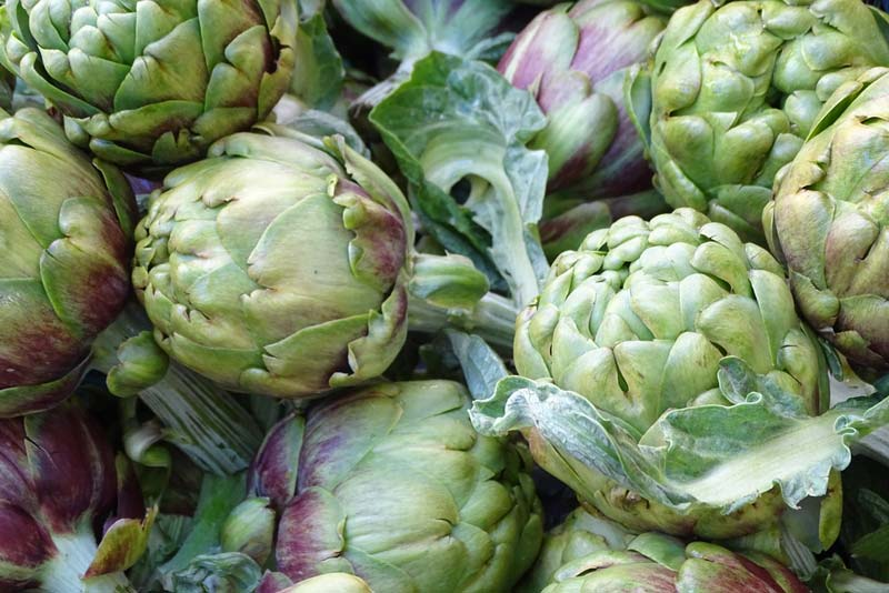Artichoke and Diabetes