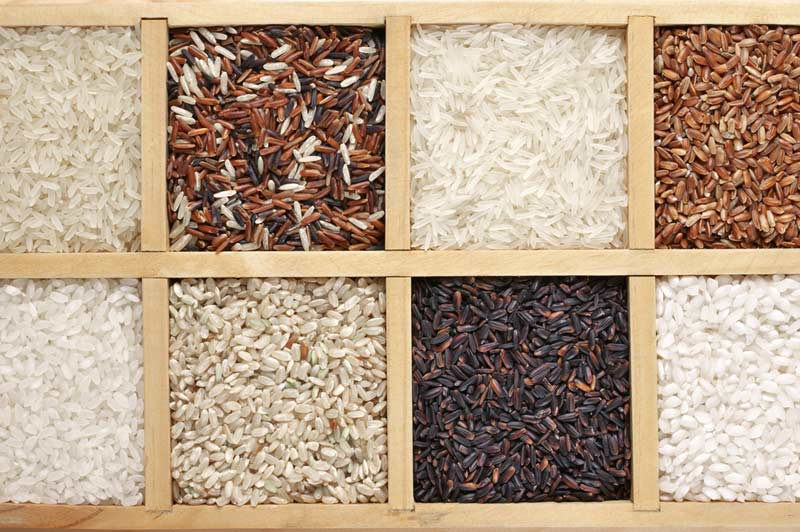 Brown Rice vs White Rice for Diabetes