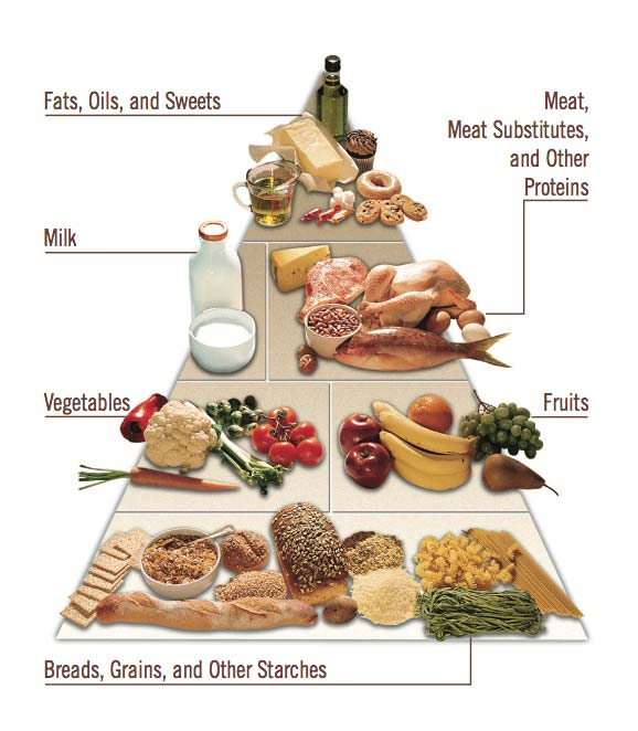 American Diabetes Association Food Pyramid